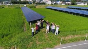 田んぼ電気プロジェクト
